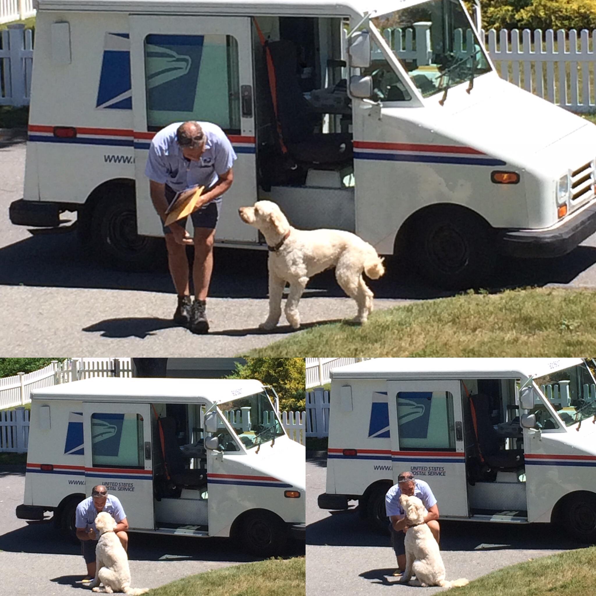 Best Mailman!